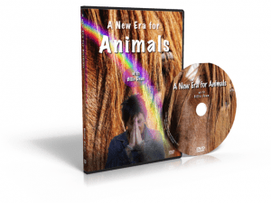 A New Era for Animals