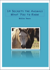 """10 Secrets the Animals Want You to Know"" cover"