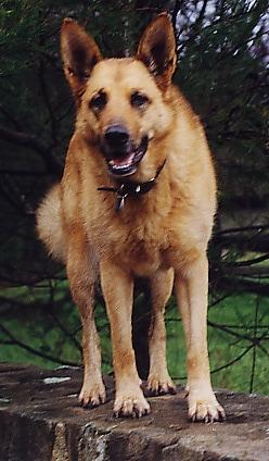 Twylah, December 1991 - December 2005