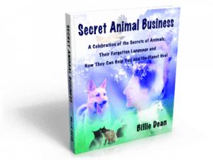 Secret Animal Business by Billie Dean