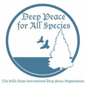 The Deep Peace Movement Gets Going!